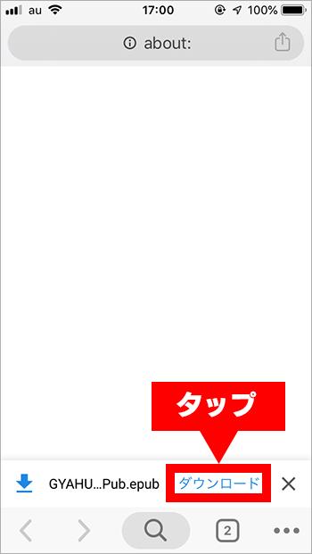 ダウンロード・ePub・iOS 02